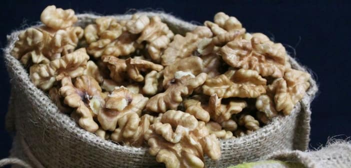 dry fruits and nuts for pregnancy
