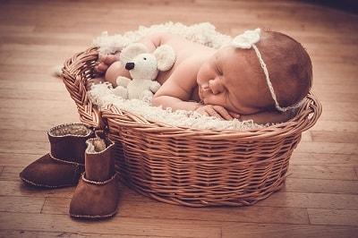 baby in brown basket