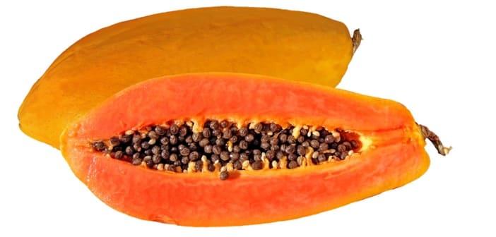 breastfeeding and papaya
