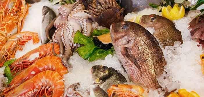 fish in india