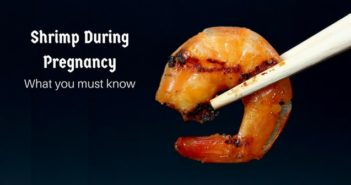 shrimp during pregnancy- what you must know
