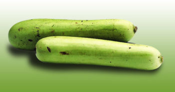 bottle gourd for moms