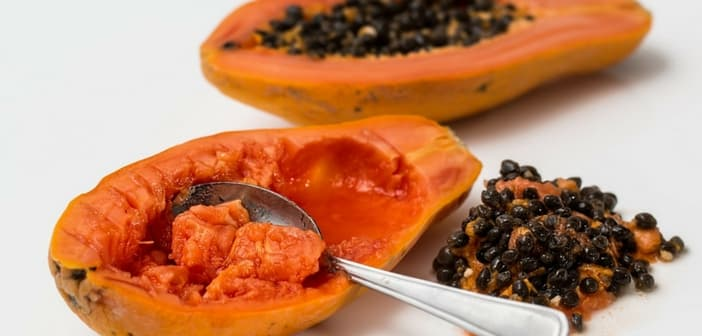 why not to eat papaya during pregnancy